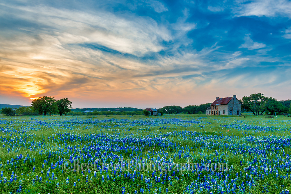 We couldn't get enough of this old farmhouse with the field of bluebonnets and the colorful Texas sunset and wispy clouds.  So maybe we overtook them but it has been years since there were bluebonnets here so had to capture as many as we can plus the property is up for sale.  Not going to last long.  We loved the sky with the great swirling orange sunset and the field of bluebonnets at this olf farmhouse in the Texas Hill Country.