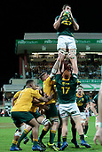 9th September 2017, nib Stadium, Perth, Australia; Supersport Rugby Championship, Australia versus South Africa; Even Etzebeth of the South African Springboks wins the line out during play in the second half