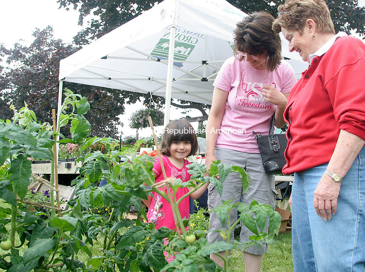 PLYMOUTH, CT 12 JUNE 2010 - 0612JW03.jpg --  Samantha Oakes age 4 and her mother Julie Oakes of Plymouth look over some tomato plants for sale from Rita Mastrobattista of Twin Pines Farm in Thomaston Saturday morning during the Terryville Congregational Church's annual fair. Jonathan Wilcox Republican-American