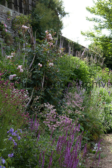 Summer border at Haddon Hall
