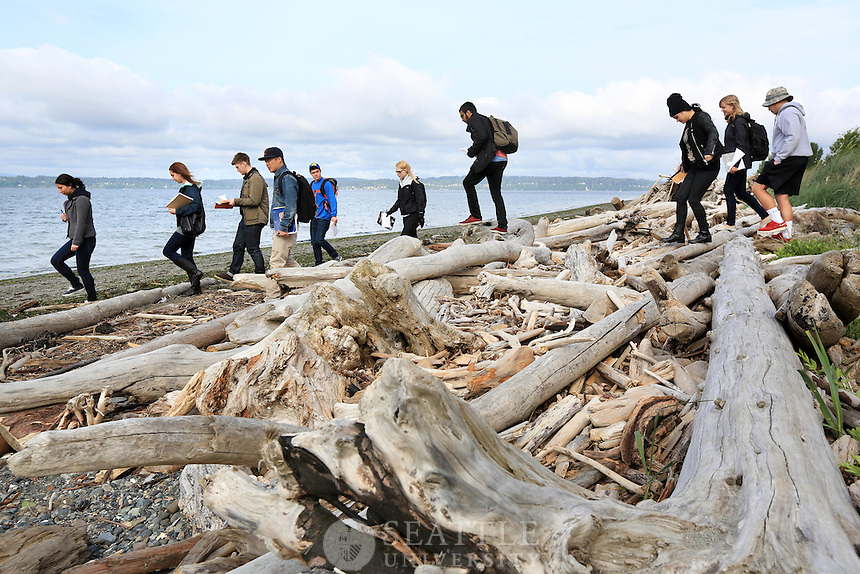 05142013- Students from Lyn Gualtieri's Fire and Ice Geology class explore the formation and rock sediments left behind at the bluff located along the beach of Seattle's Discovery Park.