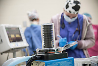 Surgery anesthesia student in OR