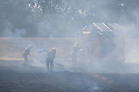 Fire fighters tackle a fire in a Barley field near Tallington,Stamford,Lincolnshire caused by a Swann flying into the overhead power cables.<br /> &copy;Tim Scrivener Photographer 07850 303986<br />      ....Covering Agriculture In The UK....
