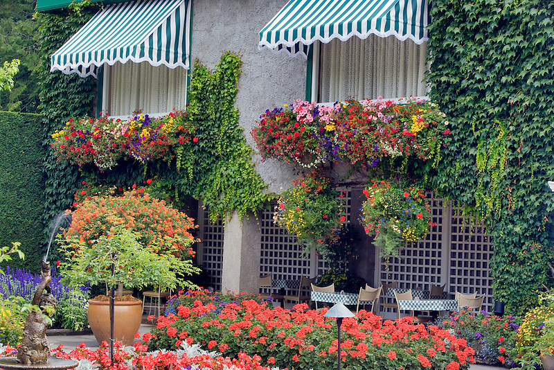 Courtyard with hanging baskets of flowers and window coverings. Butchart Gardens, B.C. Canada