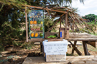 Roadside fruit stand, complimentary or for donation, North Kohala, Big Island.