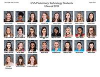VMT Class of 2019