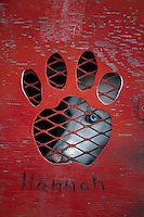 P.Solmonson's Dog *Hannah* in Dog Box at Start.Iditarod 2004 Anchorage