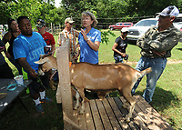 NWA Democrat-Gazette/ANDY SHUPE<br /> Linda Coffey (center), co-owner of a sheep and goat farm west of Prairie Grove and program specialist with the National Center for Appropriate Technology, speaks Wednesday, June 14, 2017, about goat care, husbandry and milking to a group of veterans participating in the NCAT's Armed to Farm program during a tour of Coffey's farm.