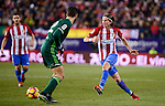 Atletico de Madrid's Filipe Luis and Real Betis's Cristiano Piccini during La Liga match between Atletico de Madrid and Real Betis at Vicente Calderon Stadium in Madrid, Spain. January 14, 2017. (ALTERPHOTOS/BorjaB.Hojas)