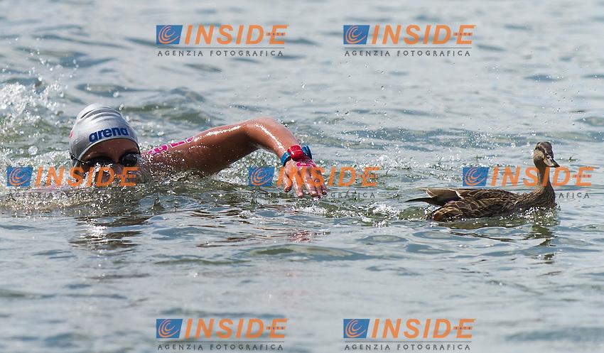 BENESOVA Alena CZE<br /> Hoorn, Netherlands <br /> LEN 2016 European Open Water Swimming Championships <br /> Open Water Swimming<br /> Women's 5km<br /> Day 02 12-07-2016<br /> Photo Giorgio Perottino/Deepbluemedia/Insidefoto