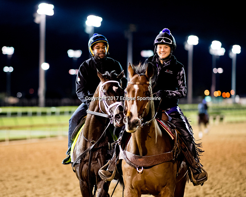 LOUISVILLE, KENTUCKY - MAY 02: Always Dreaming come soff the track after exercising during Kentucky Derby and Oaks preparations at Churchill Downs on May 2, 2017 in Louisville, Kentucky. (Photo by Scott Serio/Eclipse Sportswire/Getty Images)