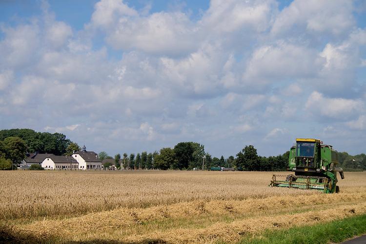 Europa, DEU, Deutschland, Nordrhein Westfalen, NRW, Rheinland, Niederrhein, Moers-Holderberg, Agrarwirtschaft, Agrarlandschaft, Maehdrescher, Getreidefeld, Ernte, Getreideernte, Kategorien und Themen, Landwirtschaft, Landwirtschaftlich, Agrar, Agrarwirtschaft, Erzeugung, Landwirtschaftliche Produkte, Landwirtschaft, Agrarlandschaft, Agrar, Agrarwirtschaft, Anbau, Feld, Acker, Nutzpflanzen, Nutzpflanze....[Fuer die Nutzung gelten die jeweils gueltigen Allgemeinen Liefer-und Geschaeftsbedingungen. Nutzung nur gegen Verwendungsmeldung und Nachweis. Download der AGB unter http://www.image-box.com oder werden auf Anfrage zugesendet. Freigabe ist vorher erforderlich. Jede Nutzung des Fotos ist honorarpflichtig gemaess derzeit gueltiger MFM Liste - Kontakt, Uwe Schmid-Fotografie, Duisburg, Tel. (+49).2065.677997, ..archiv@image-box.com, www.image-box.com]