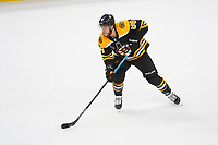 June 6, 2019: Boston Bruins right wing David Pastrnak (88) in action during game 5 of the NHL Stanley Cup Finals between the St Louis Blues and the Boston Bruins held at TD Garden, in Boston, Mass. The Blues defeat the Bruins 2-1 in regulation time. Eric Canha/CSM