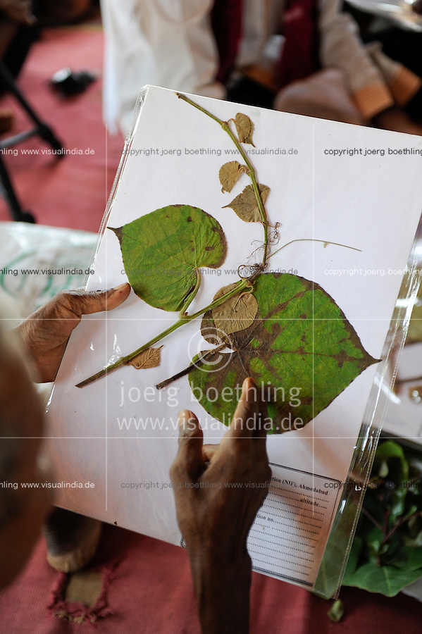 INDIA Chhattisgarh, Prof. Anil Gupta and NGO SRISTI discover on the walking tour Shodh Yatra local knowledge and inventions in the tribal villages of Bastar, traditional healer explain usage of medical plants / INDIEN Chhattisgarh , Prof. Anil Gupta und sein Team der NGO SRISTI erforschen lokales Wissen, Biodiversitaet und Erfindungen der lokalen Bevoelkerung auf der Shodh Yatra einer Wandertour durch Adivasi Doerfer in der Bastar Region, Medizinmann des Dorfes erklaert Nutzung der Heilpflanzen