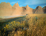 Badlands National Park, SD  <br /> Summer afternoon light on grasses and rabbit brush with badlands skyline - near Cedar Pass