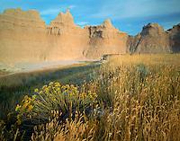 Badlands National Park, SD  <br /> Summer afternoon light on grasses and rabbit brush with badlands skyline - near Cedar Pass