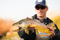 An angler holds a 24-inch brown trout caught in early October on a stream in central Montana.