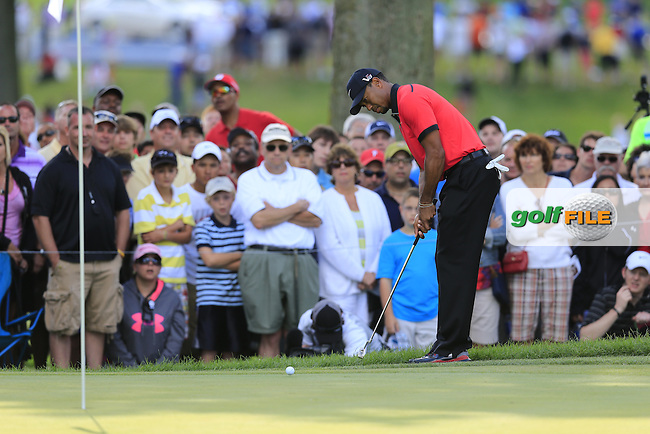 Tiger Woods (USA) putts with the edge of his putter from the rough at the 11th green during Sunday's Final Round of the 2013 Bridgestone Invitational WGC tournament held at the Firestone Country Club, Akron, Ohio. 4th August 2013.<br /> Picture: Eoin Clarke www.golffile.ie