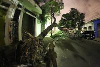 SAO PAULO, SP, 19/05/2012, QUEDA DE ARVORE.  Uma arvore de grande porte caiu na madrugada de hoje (19)na Rua Brigadeiro Galvao altura do n. 930, interditando toda a via. Como houve danos a rede eletrica,  a regiao esta sem energia, segundo informacoes, a causas da queda foi a colisao de um caminhao que fugiu do local. Luiz Guarnieri/ Brazil Photo Press.