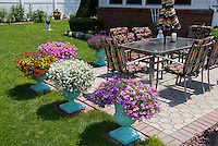 Pretty Container garden with pots around patio, annual flowers, lawn gras, garden furniture, fenced lawn, house, mulch, bricks, mixed paving, petunias