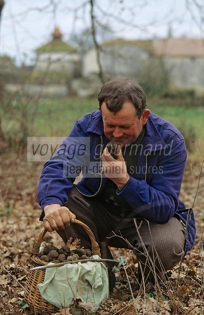 Europe/France/Midi-Pyrénées/46/Lot/Vallée du Lot/Env Cahors: Cavage (recherche des truffes) [Non destiné à un usage publicitaire - Not intended for an advertising use]