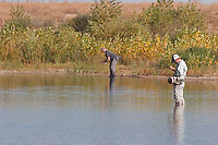 Jason Matthies and Jay Zimmerman; Fall carp flyfishing on Out-of-Towner Flats, Front Range, Colorado