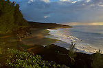The lava field of 2007 has created new territories ans a new beach on the south of La reunion island