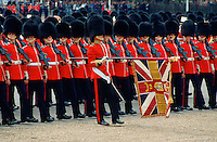 Colour bearer leads soldiers at Trooping the Colour, London, United Kingdom