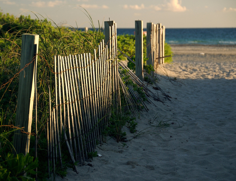 Fence on the Beach, in Miami beach.