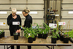 Indianola Plant Sale 4-30-16