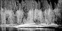 Winter Scene of a River in Yosemite National Park