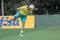 SÃO PAULO,SP,14.07.2016 - FUTEBOL-PALMEIRAS - Alecsandro durante treino na Academia de Futebol na Barra Funda,zona oeste de São Paulo, na tarde desta quinta-feira (14). ( Foto : Marcio Ribeiro / Brazil Photo Prass)