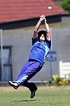 Cricket - Stoke-Nayland v ACOB