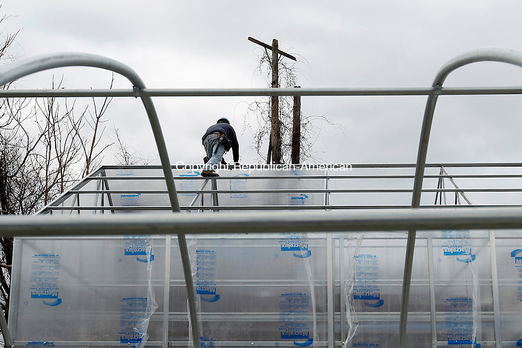 Waterbury, CT-13 January 2012-011312CM02-  A worker puts on a polycarbonate roof, part of The South End greenhouse project, which  is in full bloom on Mill Street in Waterbury Friday afternoon.  Due to the contaminated soil, gardeners plan on growing plants on raised bed and in hydroponic channels.  This has raised concerns with neighbors who say it looks like they're growing concrete.  Christopher Massa Republican-American