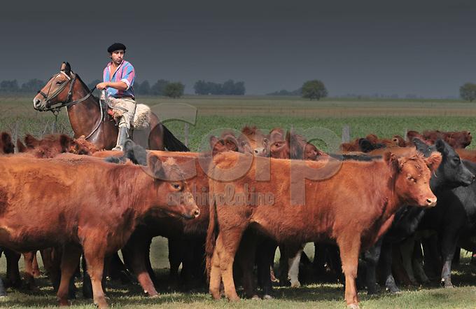 Arreoi de ganado en Ines Indart, Buenos Aires, Argentina