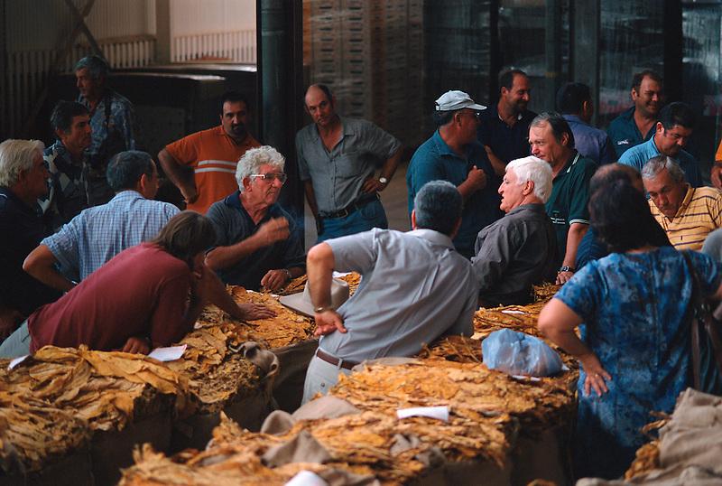 Last Sale – The Growers, Remzi Mulla and Bob Katter with Growers, Mareeba Sales Floor, Mareeba 2004.