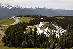 Hurricane Ridge is a mountainous area in Washington's Olympic National Park. It can be accessed by road from Port Angeles and is open to hiking, skiing, and snowboarding. At an elevation of about 5,200 feet (1,585 m), Hurricane Ridge is a year-round destination. In summer, visitors come for views of the Olympic Mountains, as well as for superb hiking. During the winter months the small, family oriented Hurricane Ridge Ski and Snowboard Area offers lift-serviced downhill skiing and snowboarding. Hurricane Ridge is named for its intense gales and winds. The weather in the Olympic Mountains is unpredictable, and visitors should be prepared for snow at any time of year. Jim Bryant Photo. ©2013. All Rights Reserved.