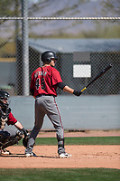 Arizona Diamondbacks outfielder Grant Heyman (45) at bat during a Minor League Spring Training intrasquad game at Salt River Fields at Talking Stick on March 12, 2018 in Scottsdale, Arizona. (Zachary Lucy/Four Seam Images)