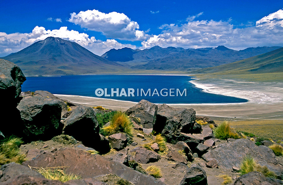 Lago salgado no Deserto do Atacama. Chile. 2004. Foto de Thais Falcão.