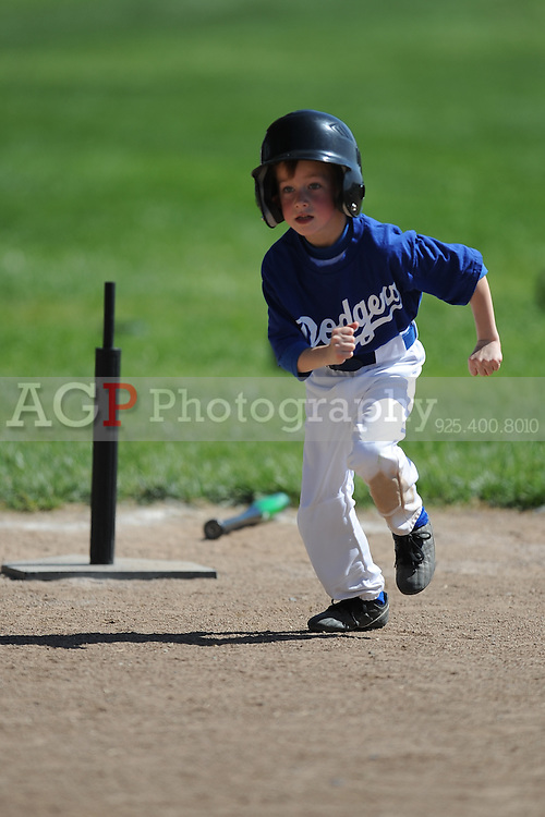 The T-Ball Dodgers of Pleasanton National Little League  March 21, 2009.