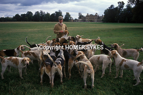 Duke of Beaufort Hunt Badminton House estate Gloucestershire Morning hound exercise in Parkland