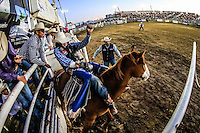 Rodeo Expogan2016