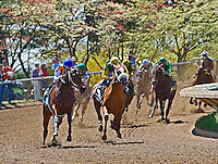 Spring Thoroughbred horse racing at Keeneland, a National Historic Landmark in Lexington, Kentucky.  Also recongnized as one of the most beautiful horse racing venues in the United States.