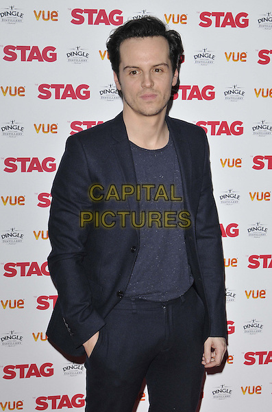 LONDON, ENGLAND - MARCH 13: Andrew Scott attends the &quot;The Stag&quot; gala film screening, Vue West End cinema, Leicester Square, on Thursday March 13, 2014 in London, England, UK.<br /> CAP/CAN<br /> &copy;Can Nguyen/Capital Pictures