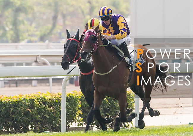 Jockey Tommy Berry riding Storm Signal competes in the Race 2, Able Friend Handicap, during the Longines Hong Kong International Races at Sha Tin Racecourse on December 10 2017, in Hong Kong, Hong Kong. Photo by Victor Fraile / Power Sport Images