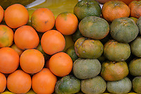 Lulo, naranjilla, obando, coconilla, nuquí, Solanum quitoense, Mandarina, mandarino, tangerine,  Citrus reticulata, Citrus unshiu, Citrus reshni. Photo: VizzorImage/CONT