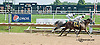 Lemon Juice winning at Delaware Park on 8/29/2013