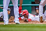 15 April 2018: Washington Nationals outfielder Michael A. Taylor slides home safely on a wild pitch in the 8th inning against the Colorado Rockies at Nationals Park in Washington, DC. All MLB players wore Number 42 to commemorate the life of Jackie Robinson and to celebrate Black Heritage Day in pro baseball. The Rockies edged out the Nationals 6-5 to take the final game of their 4-game series. Mandatory Credit: Ed Wolfstein Photo *** RAW (NEF) Image File Available ***
