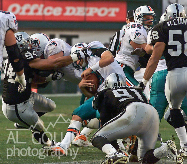 Oakland Raiders vs. Miami Dolphins at Oakland Alameda County Coliseum Saturday, January 6, 2001.  Raiders beat Dolphins  27-0.  Miami Dolphins quarterback Jay Fiedler (9) sacked by Oakland Raiders defensive end Tony Bryant (94).