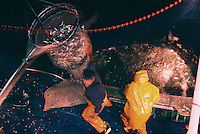 """Europe/France/Bretagne/56/Morbilhan/Quiberon: Pèche à la sardine sur le sardinier """"Kanedeven"""" à la tombée de la nuit"""